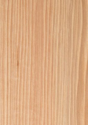 Natural on Hickory